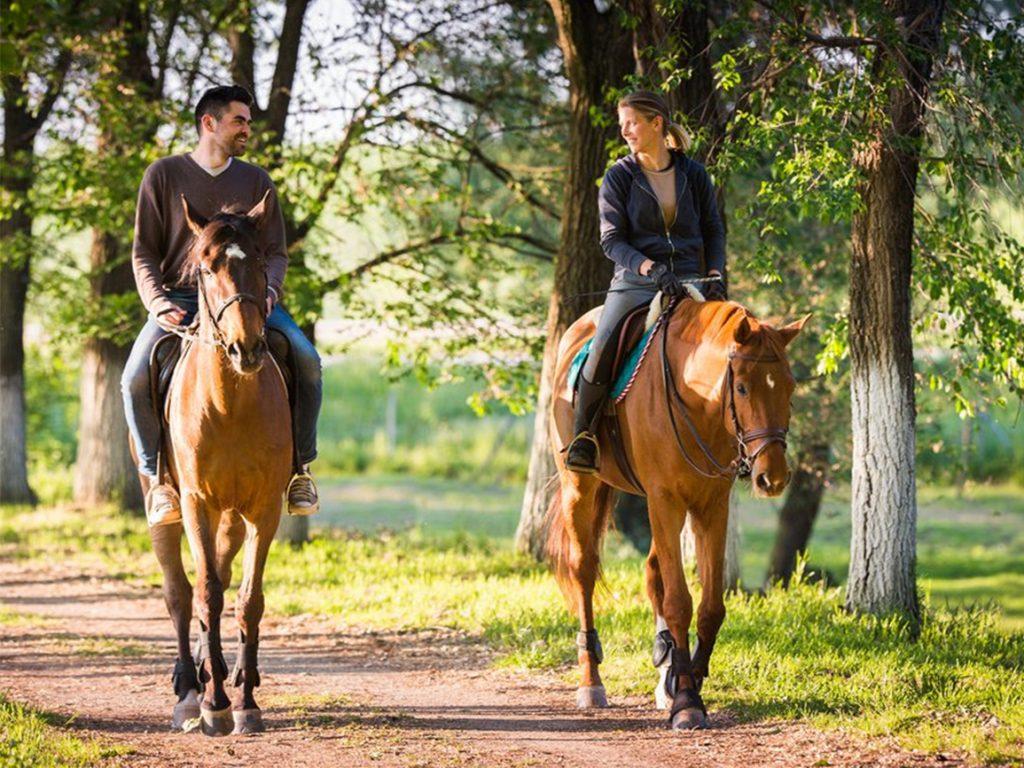 konnie-progylki-paroi
