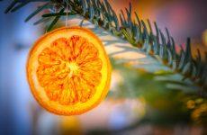 Как засушить апельсины для декора – несколько простых способов