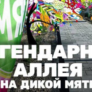 На поле фестиваля «Дикая Мята» будет заложена «легендарная» аллея!