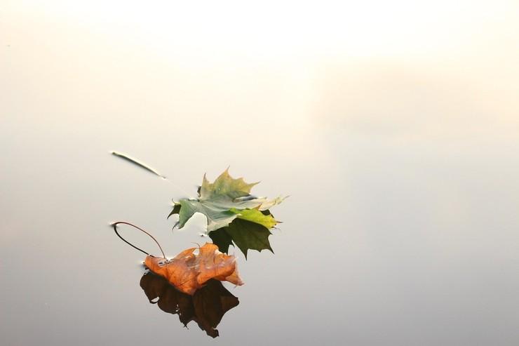 Стиль: Осень, осень! Гороскоп на октябрь – фото №4