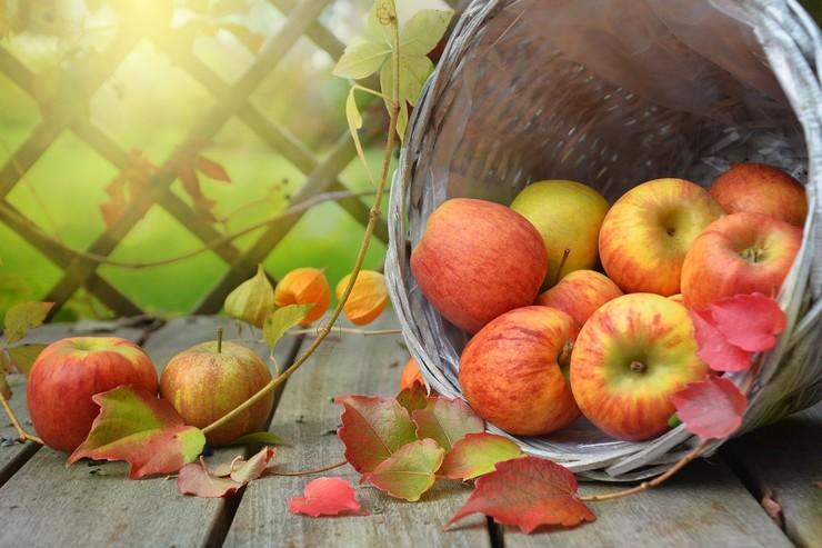 Стиль: Осень, осень! Гороскоп на октябрь – фото №2